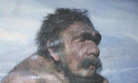 La Vanguardia (Испания): возможно, неандертальцы говорили не хуже нас